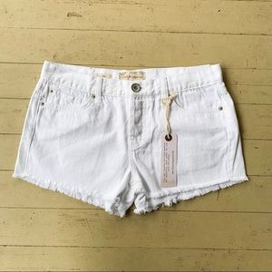 Band of Gypsies white denim frayed shorts 26